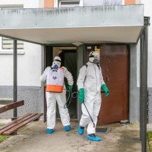 Laiptinių dezinfekcija kelia įtarimų: verslininkai nesąžiningai įkainoja paslaugas?