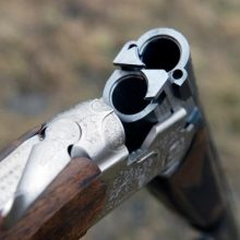 Šiauliuose tvarkydama mirusio tėvo namus dukra rado ginklą