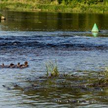 Hidrologas: šalies didžiosios upės vis dar kritiškai nusekusios