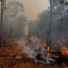 Sakyti, kad Amazonija yra žmonijos paveldas – klaidinga