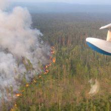 V. Putinas nurodė kariuomenei padėti gesinti Rusijos rytuose degančius miškus