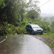 Madagaskare galingas ciklonas nusinešė 9 gyvybes, 1,4 tūkst. žmonių neteko pastogės