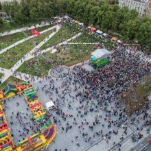R. Karbauskis: galutinį sprendimą, kam priklausys Lukiškių aikštė, priims Seimas