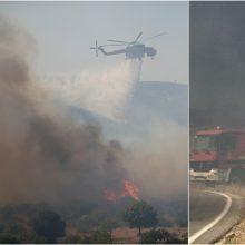 Graikijos ugniagesiai suvaldė didžiulį miško gaisrą: liepsnų aukštis siekė 20 metrų