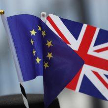 JK leiboristai pergalės atveju žada drastiškas permainas