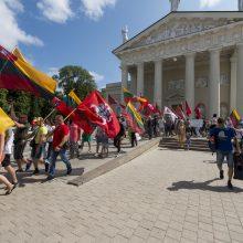 Protestas Vilniuje: susirinkusieji priešinosi privalomam testavimui ir skiepams