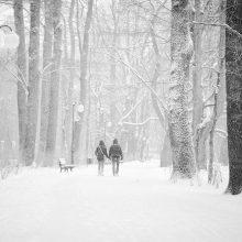 Sinoptikams prognozuojant 15 laipsnių šaltį, 10 vaistininkės patarimų, kaip pasirūpinti sveikata