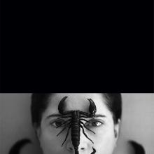 Agnės Dautartaitės-Krutulės darbas