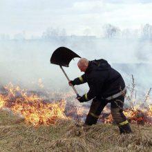 Per parą Lietuvoje kilo 23 žolės gaisrai: išdegė beveik dvylika hektarų ploto