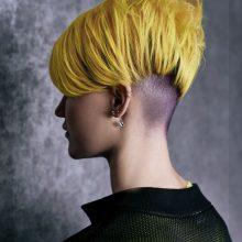 Drąsa: jaunimą A.Mašauskas įkvepia drąsiems eksperimentams. Mergina su aštria šukuosena – šonuose itin patrumpintais plaukais primena vaikiną, o ilgaplaukis vaikinas – merginą.