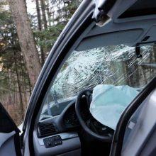 Girta vairuotoja Panevėžyje atsitrenkė į medį: keleivė gydoma reanimacijoje