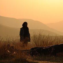 """""""Kino pavasaris"""" pristato atidarymo filmą, vizualiąją tapatybę ir kviečia įsiklausyti į save"""