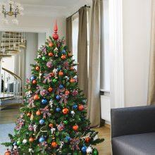 Švenčių belaukiant: kaip išsirinkti ir prižiūrėti kalėdinę eglutę?