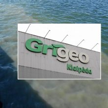 """Aplinkos apsaugos departamentas pradėjo tyrimą dėl bendrovės """"Grigeo Klaipėda"""" taršos"""
