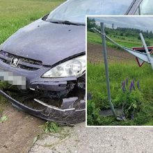 Vilniaus rajone ženklą nuvertusiam girtam vairuotojui išsisukti nepavyko: įkliuvo pasieniečiams