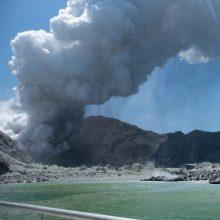 N. Zelandijos policija pradėjo tyrimą dėl mirčių per ugnikalnio išsiveržimą