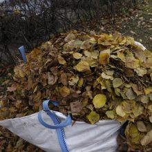 Aplinkosaugininkai primena: tinkamiausias žaliųjų sodo ir daržo atliekų tvarkymas – kompostavimas