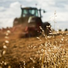 Seimas svarstys sumažinti žemės mokesčio lengvatos dydį žemės ūkio paskirties žemei