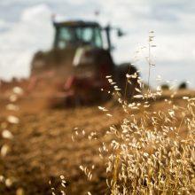 TVF teigiamai įvertino Lietuvos ūkio atsparumą, bet siūlo galvoti apie produktyvumo didinimą