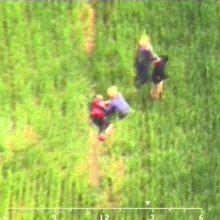 Dingusią senolę pasieniečiai surado iš sraigtasparnio (vaizdo įrašas)