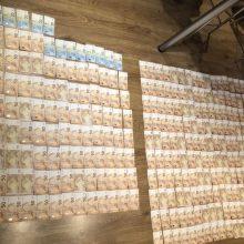 Kriminalistų rankose – 185 tūkst. eurų vertės vagyste įtariami asmenys