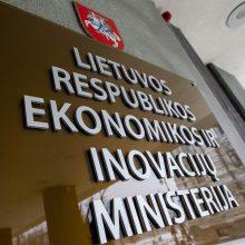 Šalies ekonomikai būtina reanimacija, tačiau gaivinti reikia pačią verslo gaivintoją
