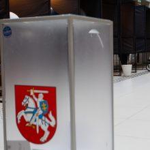 Politikai planuoja įsteigti rinkimų apygardą užsienyje balsuojantiems lietuviams