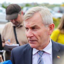 Taika Seime nesklando: politinės muilo operos serijų bus daugiau