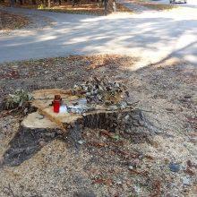 Į Draugystės parke nupjautą medį sureagavo jautriai – uždegė žvakutes