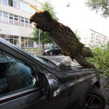 Audros padariniai: apgadinti automobiliai, nuo žaibo užsidegęs gandralizdis