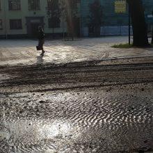Liūtis plovė Kauną: skendo automobiliai, slinko nuošliaužos