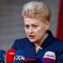 Prezidentė: Lietuva niekada nebuvo tokia saugi, kaip dabar