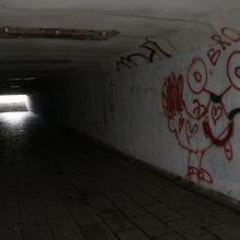 Policija ieško į IX fortą vedančias nuorodas apipaišiusių chuliganų