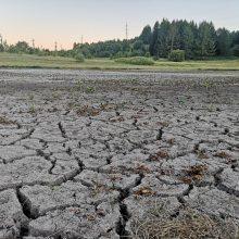 Dėl sausros Lietuvoje skelbiama ekstremali padėtis