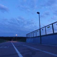 Po naktinio kino seanso Panemunės šile – tamsus kelias namo
