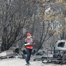 Visa niokojantys gaisrai piešia kitokį Australijos veidą: dar negirdėtos versijos