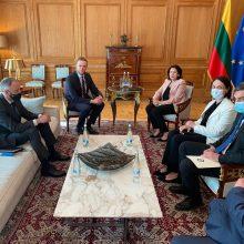 G. Landsbergis ragina Sakartvelo politines jėgas susitelkti reformoms