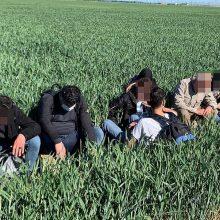 VSAT: į Užsieniečių registracijos centrą šiemet negrįžo 70 prieglobsčio prašytojų