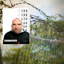 Ieškomas iš darbo vietos pabėgęs nuteistasis, kalintis Pravieniškėse