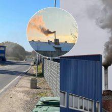 Iš įmonės kamino virstantys dūmai kartina romainiškių gyvenimą