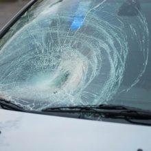 Opelio vairuotojas pėsčiųjų perėjoje partrenkė mamą ir vaiką