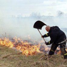 Sekmadienį ugniagesiai vos spėjo suktis: daugiausiai kartų lėkė gesinti pievų