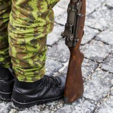 Į Seimą grįžta prezidentės veto dėl teisės turėti ginklą karo metu