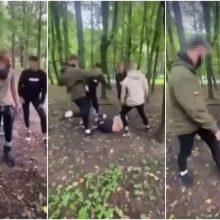Egzekucija Draugystės parke: linčo teismą surengę keršytojai išlipo iš teisinės balos beveik sausi