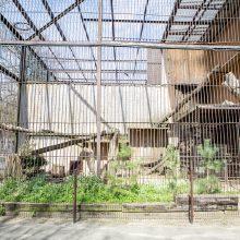 Drama dėl Zoologijos sodo vadovo kėdės: ministerija pripažįsta klaidas