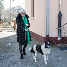 Drausmingos: vos paėmus šeimininkei pavadėlį į rankas, Lora džiugiai sutinka šį tvirtą pasivaikščiojimo pažadą.