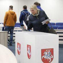 Per rinkimus trijose apygardose iki šiol balsavo 14 proc. rinkėjų