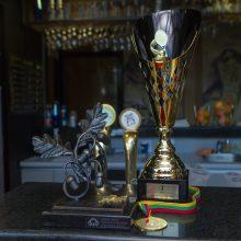 """""""Profesorių taurės"""" turnyre – meistriškumo pamokos"""