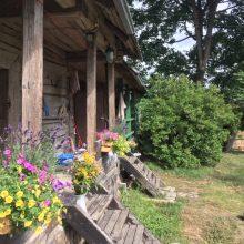 Apie menininkus, kurie savo namus kuria kaime prie Verbliūdo