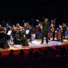 """Festivalis """"Avanti""""  kviečia pasinerti į unikalią kamerinių orkestrų muziką"""